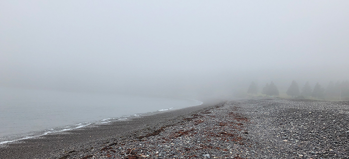 Image of Jasper Beach in the mist