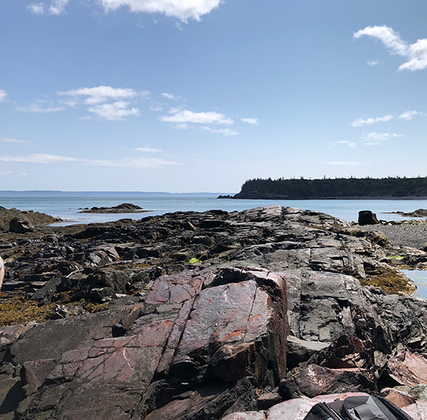 Image of Campobello shoreline