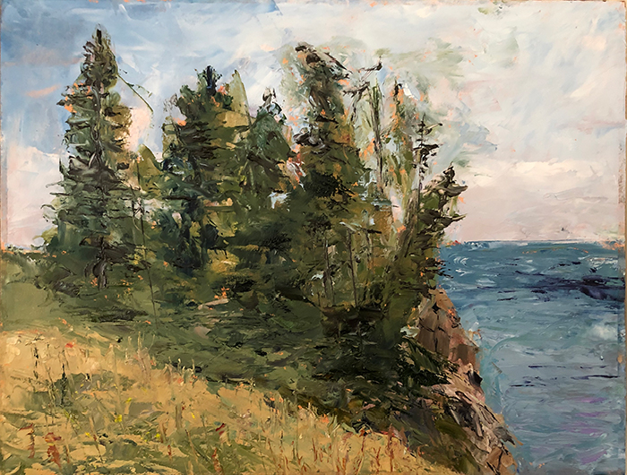 Image of Quoddy State Park Painting