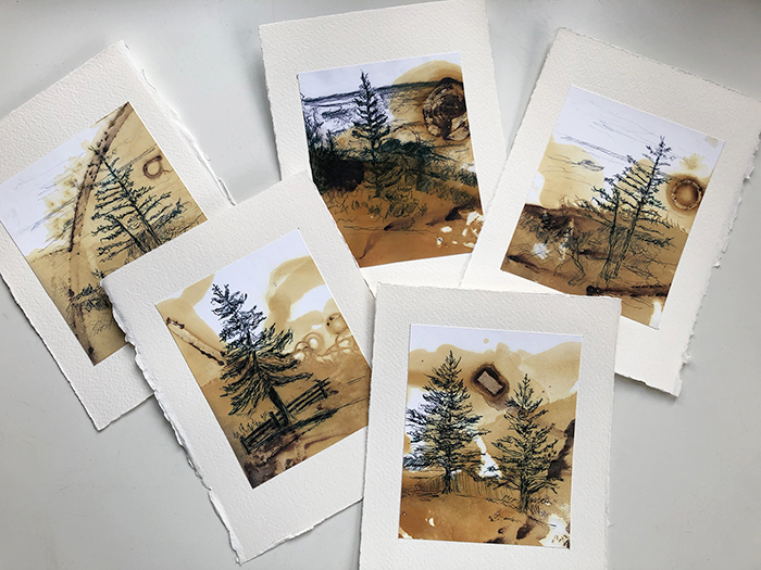 Image of Maine Tree sketches