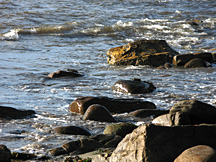 Image of Beach rocks