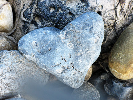 image of heart shaped stone