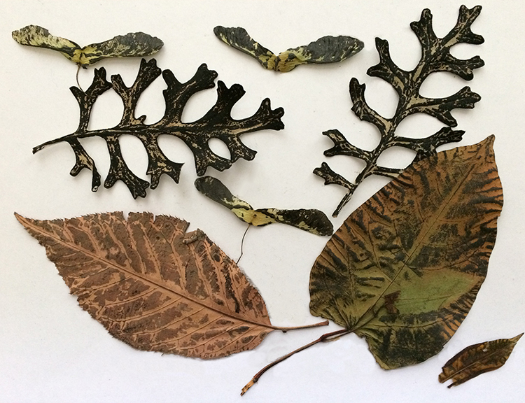 Leaves after printing