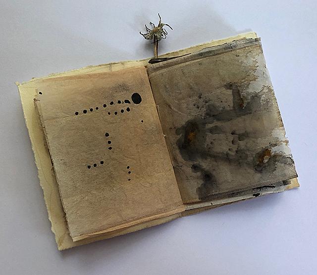 Image of Tea Bag Book